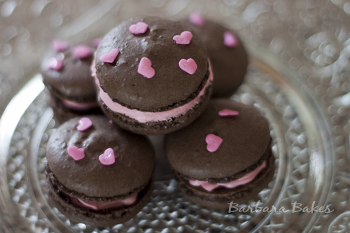 Pink Chocolate Macarons for MacTweets