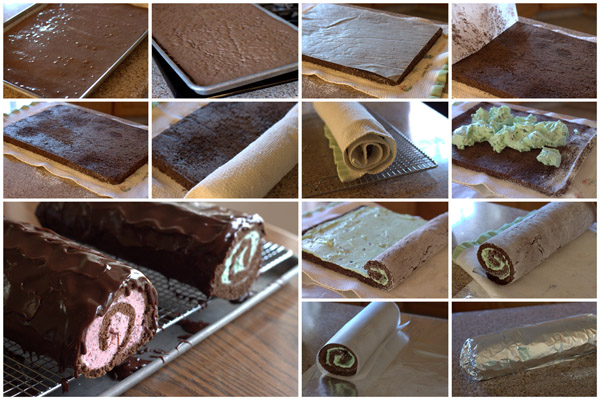 Ice cream cake roll recipe easy