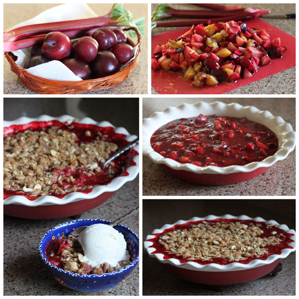Rhubarb-Plum-Crumble-Collage-Barbara-Bakes