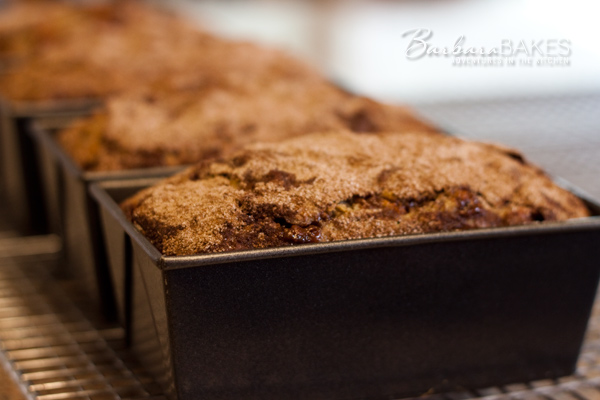 Cinnamon-Chip-Zucchini-Bread-Loaves-Babara-Bakes