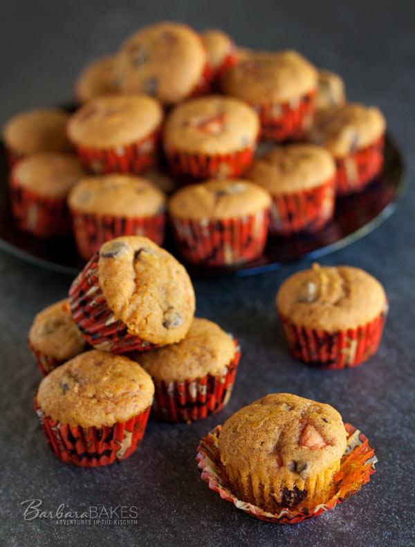 Pumpkin-Chocolate-Chip-Bites-barbara-Bakes