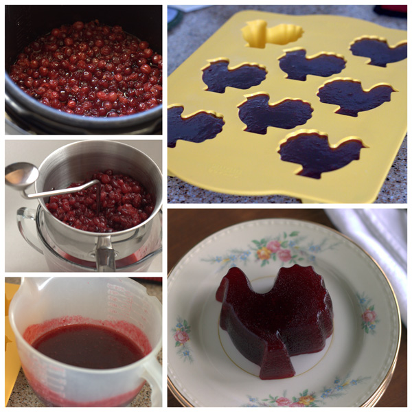 How to Make Cranberry Jelly BarbaraBakes.com