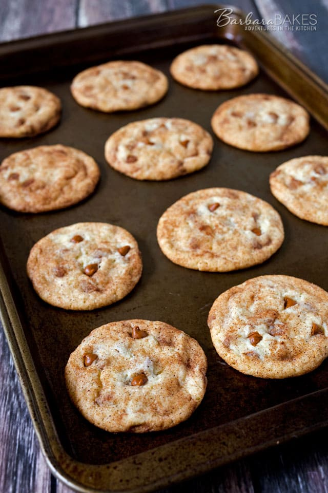Take Snickerdoodles to a whole new level with the addition of Cinnamon Chips to the batter.