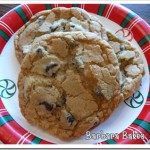 Alice's Best EVER Chocolate Chip Cookie
