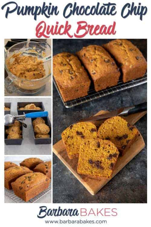 Pumpkin Chocolate Chip Bread - An easy quick bread recipe from BarbaraBakes.com