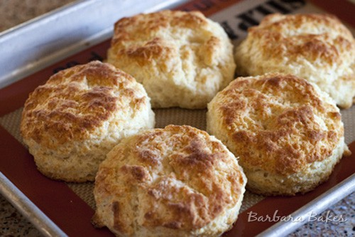 Buttermilk Biscuits aka Australian Scones