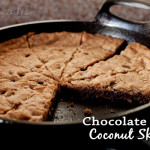 Chocolate Chip Coconut Skookie