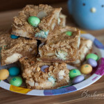 White Chocolate Macadamia Nut Blondies