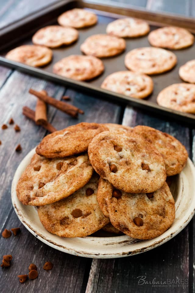 Take Snickerdoodles to a whole new level with the addition of Cinnamon Chips.