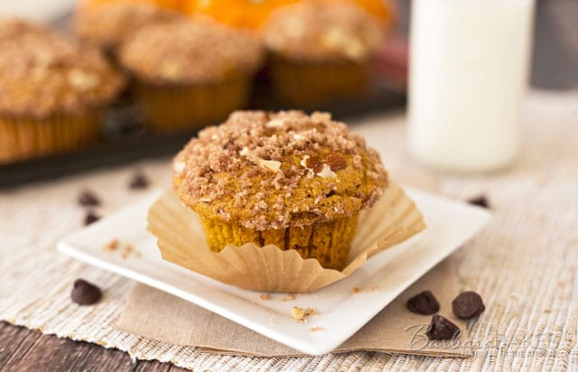 If you love pumpkin chocolate chip bread, you'll love these lighter, fluffier, quicker-cooking pumpkin chocolate chip muffins.
