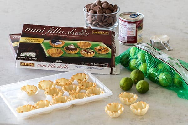 Ingredients for Chocolate Covered Frozen Key Lime Pie Bites