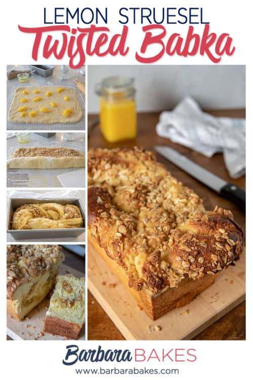 Lemon Struesel Twisted Babka from Barbara Bakes - A Perfect Holiday Bread