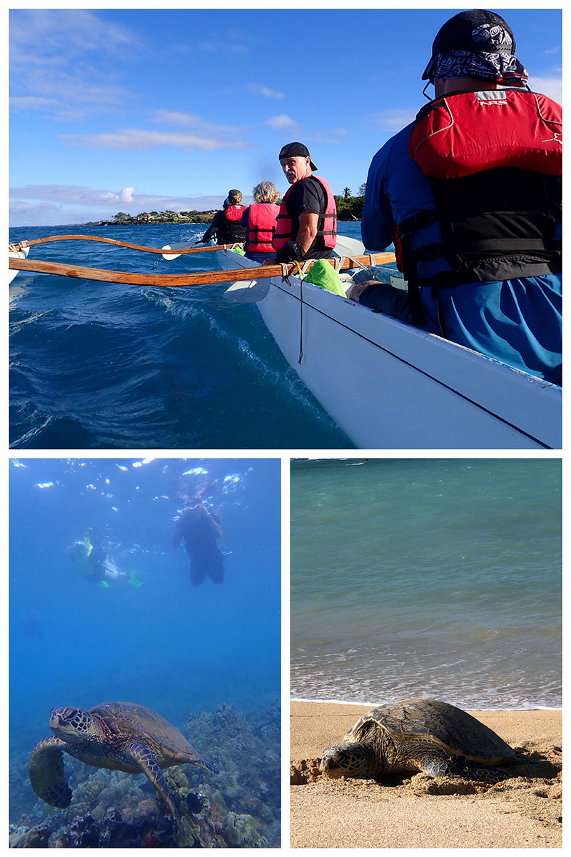 South Maui Turtle Town Outrigger Canoe Tour
