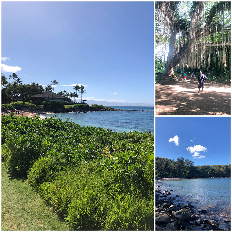 Snorkeling at Kapalua Bay and Honolua Bay